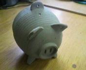 20100529002豚