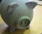 20100529001豚